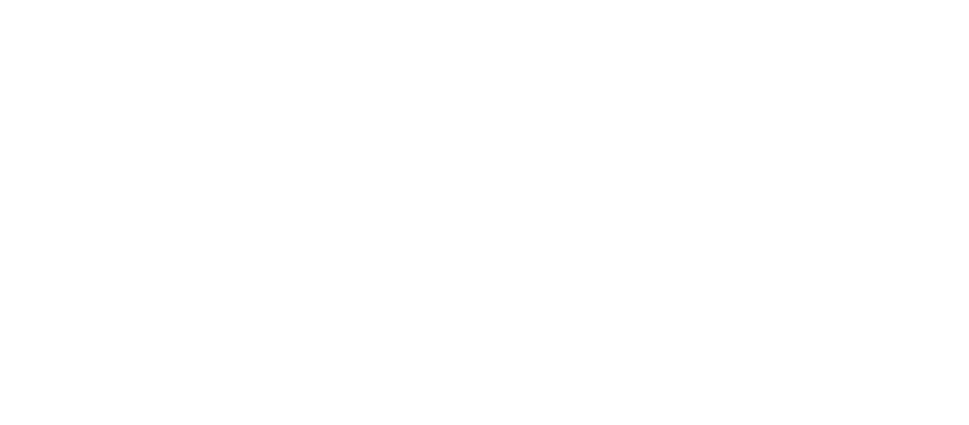 Wedis Group Logo